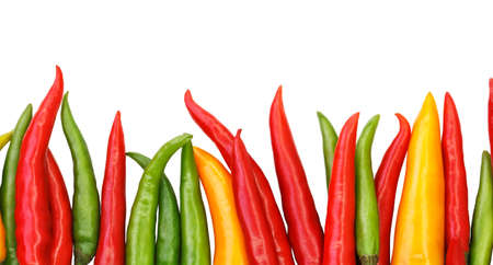 bright colorful chili pepper border isolated on white background