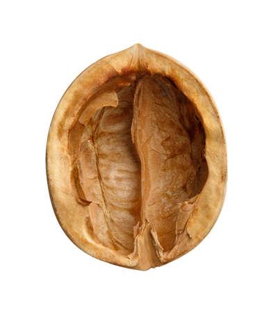 empty walnut shells isolated on white background