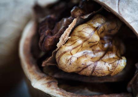 open walnut macro