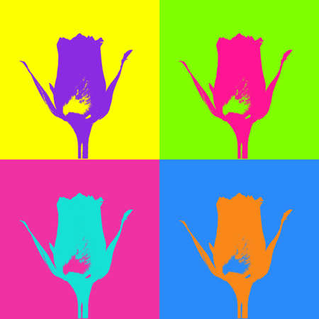 pop art poster in style Warhol with a bright colored rose on various colorful backgrounds
