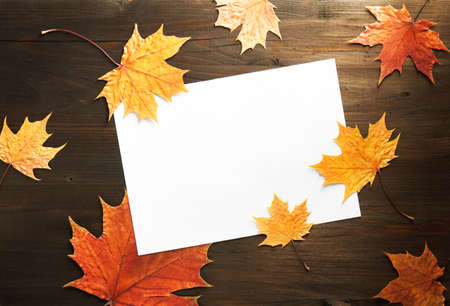 dry autumn leaves on wooden background with a sheet of paper, copy space, top view