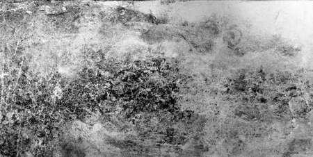 Dirty gray concrete wall texture as grunge 免版税图像 - 147023264