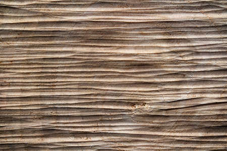 saw cut wood macro texture for background