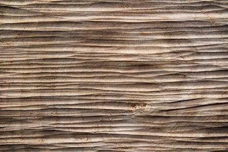 saw cut wood macro texture for background 免版税图像 - 147615228