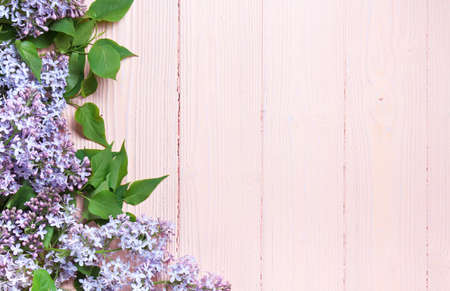 branch of lilac on a painted pastel wooden background 免版税图像 - 147614121