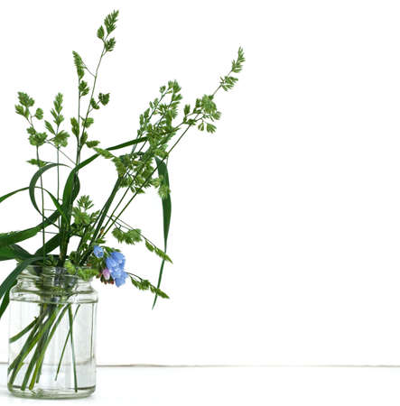 wild flowers in a glass jar on a white background 免版税图像