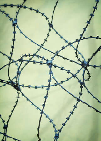 barbed wire on a light background