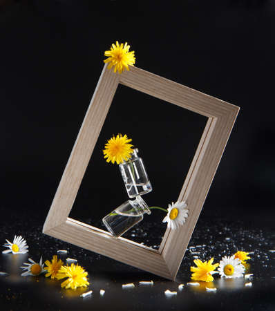 wild yellow daisy and chamomile flowers in small glass bottles balancing in photo frame 免版税图像
