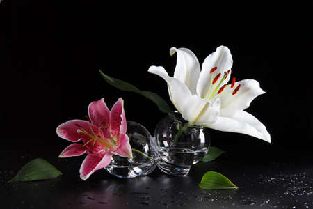 white and pink lily flowers in a glass bowl on a black background