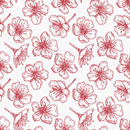 spring seamless pattern with with pink cherry flowers on a white background