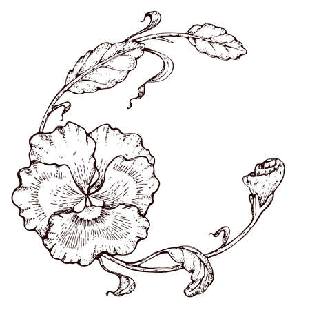 Hand drawing round frame with flower pansies, line-art on white background Vettoriali