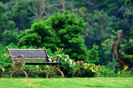 chaise de jardin en métal dans le beau jardin