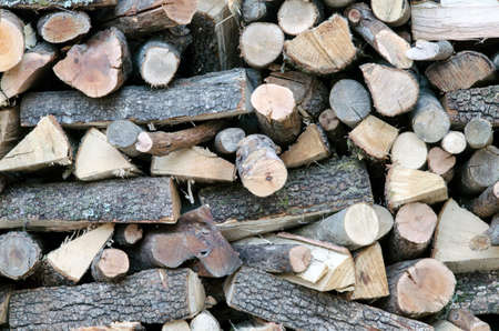 log wall: Wooden logs for the fireplace in winter