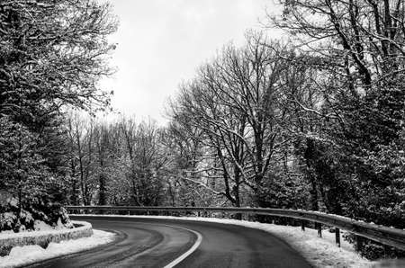 snowy mountain road snow cleared with trees black and white photo