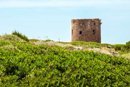upland: Ancient spanish tower on coastal upland, blue sky  and green around in sunny day