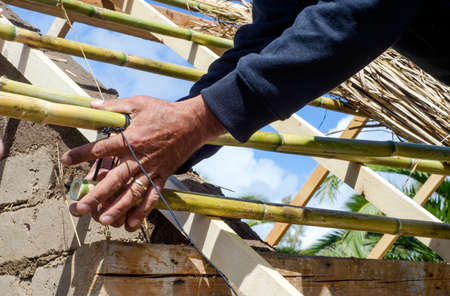 knotting: male hands knotting reeds for a roof in green architecture at workshop