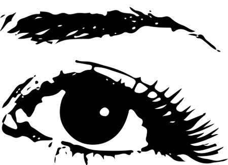 human eye: Human Female Eye with eyebrow as Vector. Icon design over white background, vector illustration Stock Photo