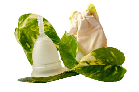 menstrual: White menstrual cup with green leaves and little beige bag isolated in white background. Photo images