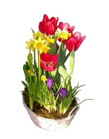 春花のバスケット