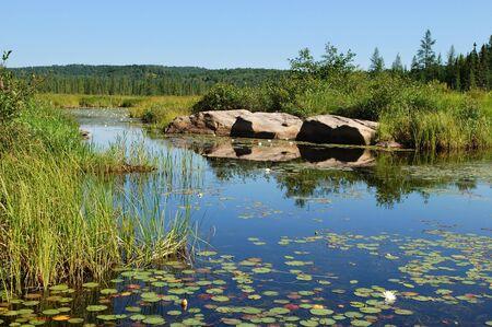 Blue pond  Algonquin Park, Ontario, Canada