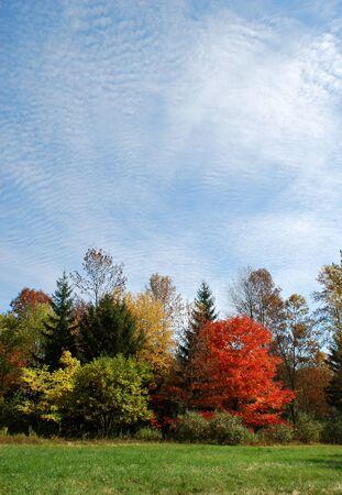 Autumn in Ontario, Canada