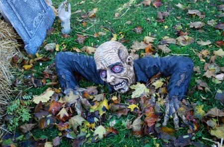 Halloween Decoration  Stock Photo - 16986758