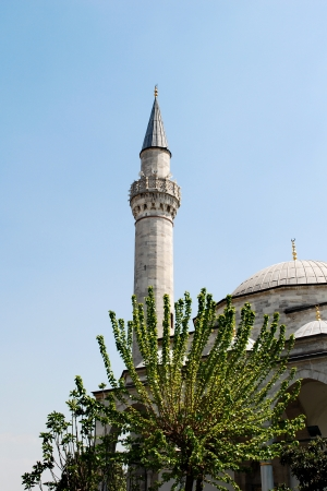 Minaret and Tree  Stock Photo