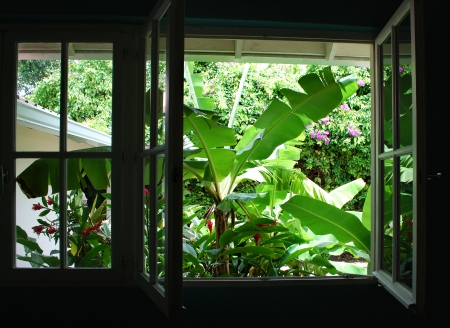 Window with tropical garden view on Santa Lucia Island