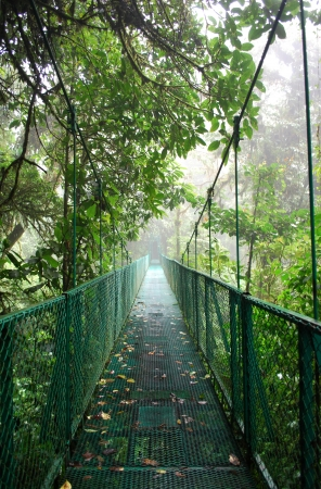 Suspension bridge in Cloud forest, Costa Rica Stock Photo