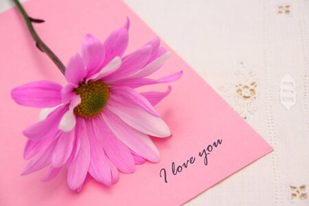andamp: Pink daisy on notepaper with the words andamp,quot,I Love Youandamp,quot, Stock Photo