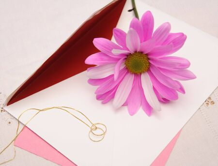 Love letter with pink daisy and two gold rings on a chain. Stock Photo