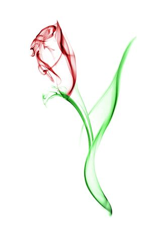 Red flower with green leaves. Image is a careful combination of three separate photographs of smoke. Isolated on a white background. Stock Photo