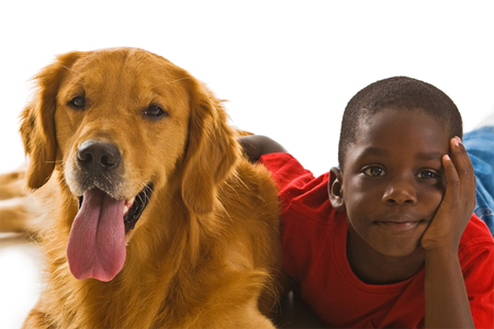 boy sitting: A small African American boy with a beautiful golden retriever dogs.