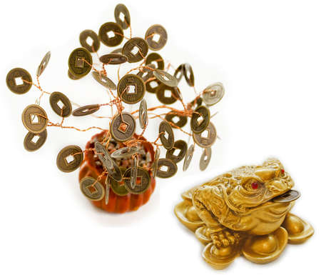 Chinese Feng Shui Frog with coins and money tree photo