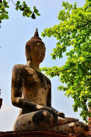 The Ayutthaya historical park photo