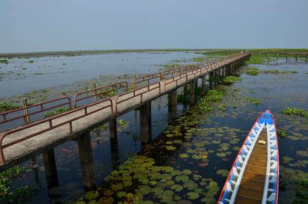 brige: Freshwater at Thalenoi Phatthalung Thailand