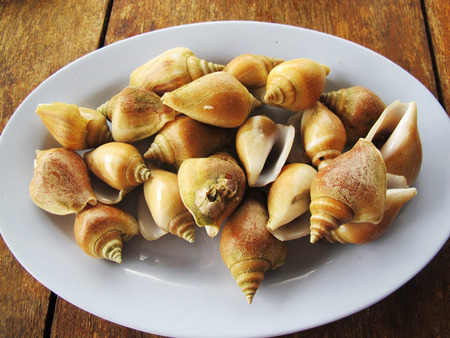 Steamed Wing Shell