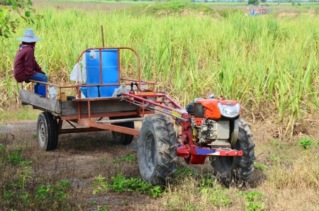 Tractor and Trailer towing at Sugarcane Field photo