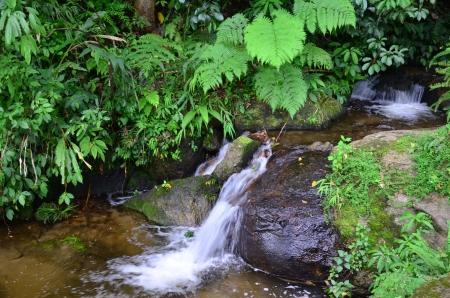 namtok:  Namtok Siriphum  Sirithan Waterfall  at Mae Ya, Doi Inthanon , Chiang mai , Thailand