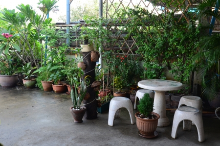 Backyard garden or Home Garden Stock Photo - 25065686