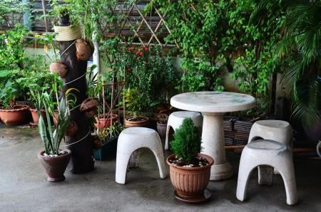 Backyard garden or Home Garden