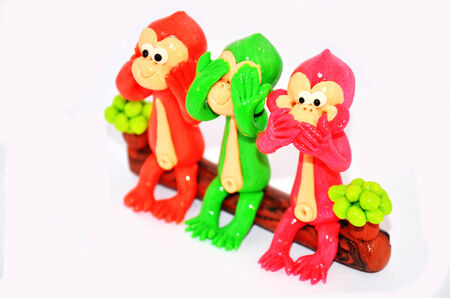 Three Monkey Model photo