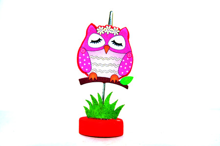 Pinch Paper Owl Model  photo