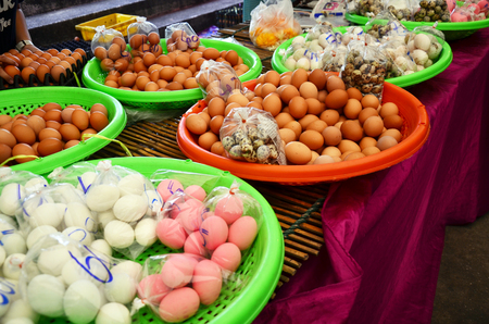 chicken farm: Chicken and duck egg and Preserved egg and Salted egg and Quail egg