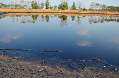 black soil: Effects Environmental from Water contaminated with Chemicals and oil.