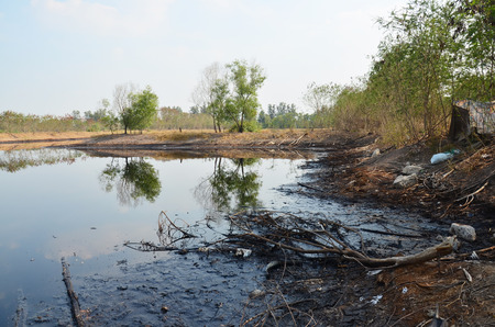 Effects Environmental from Water contaminated with Chemicals and oil.  Banque d'images