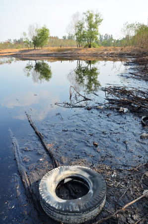 Effects Environmental from Water contaminated with Chemicals and oil.  photo