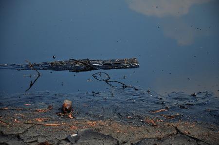 illicit: Gli effetti sull'ambiente di acqua contaminata da sostanze chimiche e petrolio e questo reflui verificano dallo smaltimento di rifiuti industriali e olio vecchio per le fonti d'acqua naturali di illeciti. Archivio Fotografico