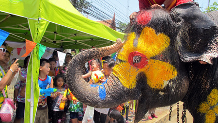 Songkran Festival is celebrated in a traditional New Year is Day from April 13 to 15, with the splashing water with elephants on April 14, 2015 in Ayutthaya, Thailand.