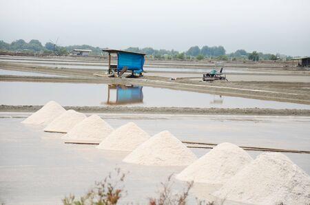 evaporacion: Los tailandeses manteniendo la sal de la agricultura de sal o sal estanque de evaporaci�n para almac�n en Bangkhunthein en Bangkok Tailandia. Foto de archivo